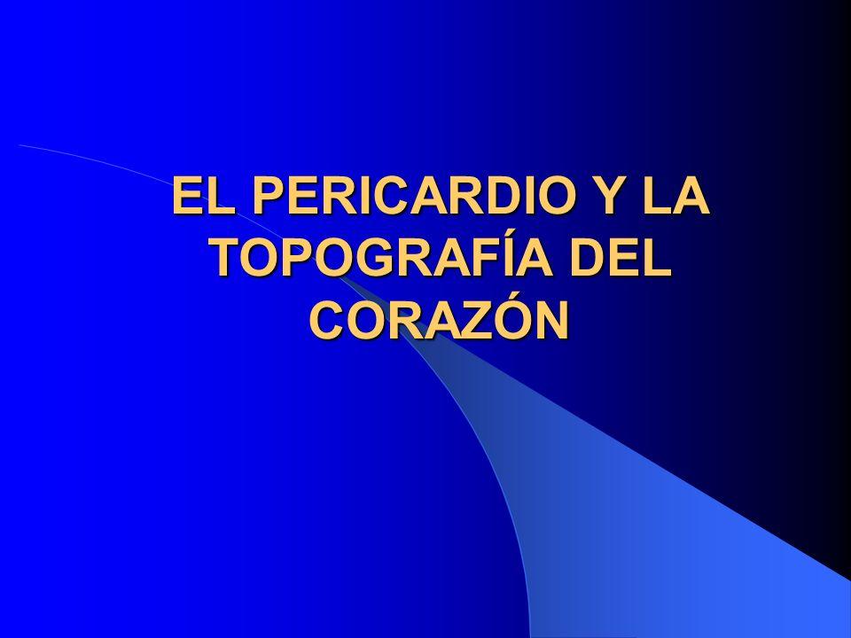 EL PERICARDIO Y LA TOPOGRAFÍA DEL CORAZÓN