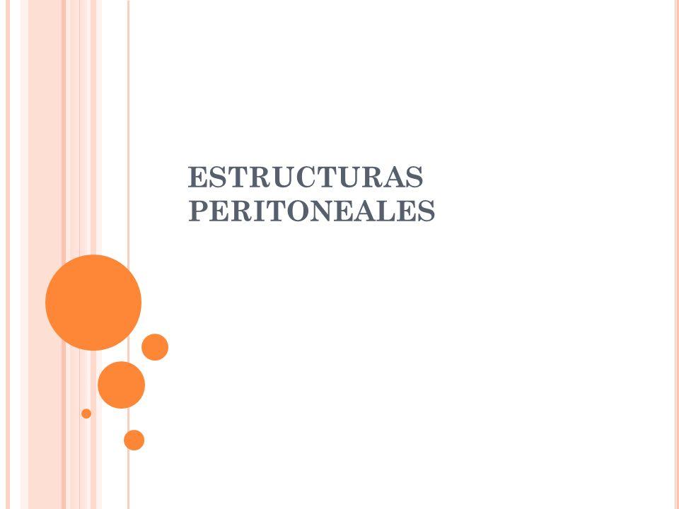 ESTRUCTURAS PERITONEALES