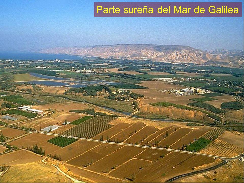 Parte sureña del Mar de Galilea
