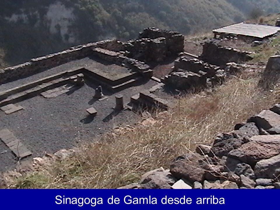 Sinagoga de Gamla