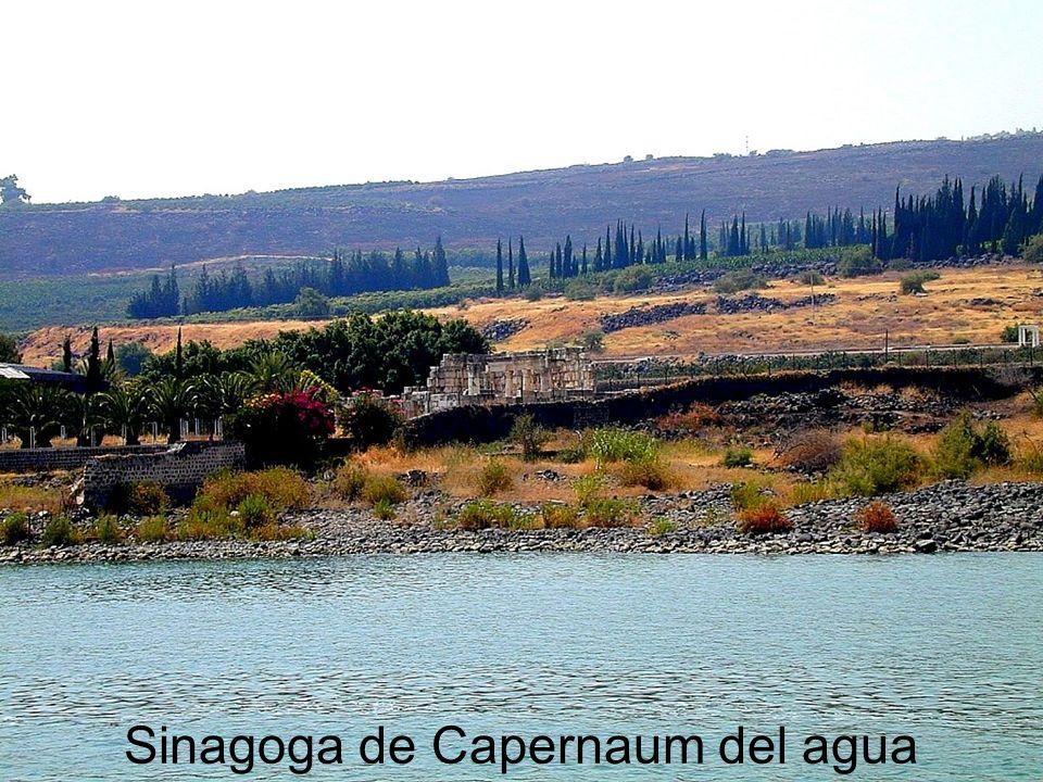 Sinagoga de Capernaum del agua
