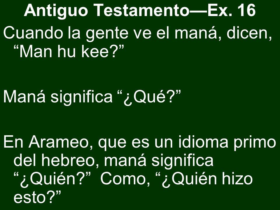 Antiguo TestamentoEx. 16 Cuando la gente ve el maná, dicen, Man hu kee? Maná significa ¿Qué? En Arameo, que es un idioma primo del hebreo, maná signif