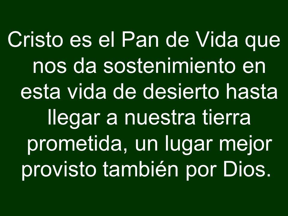 Cristo es el Pan de Vida que nos da sostenimiento en esta vida de desierto hasta llegar a nuestra tierra prometida, un lugar mejor provisto también po