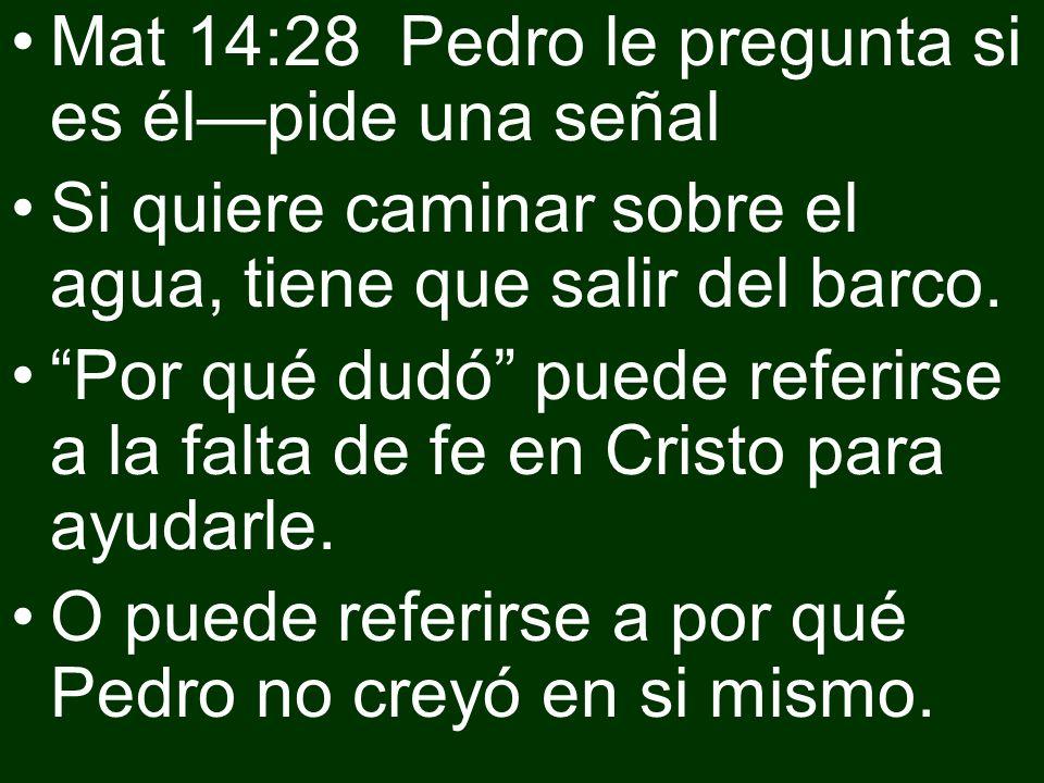 Mat 14:28 Pedro le pregunta si es élpide una señal Si quiere caminar sobre el agua, tiene que salir del barco. Por qué dudó puede referirse a la falta