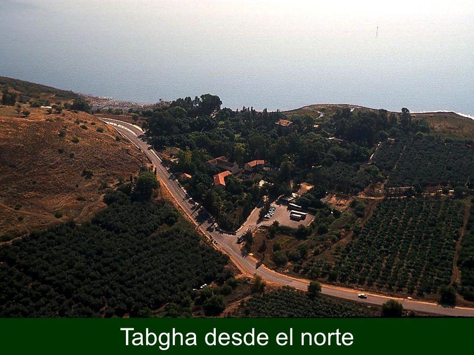 Tabgha desde el norte