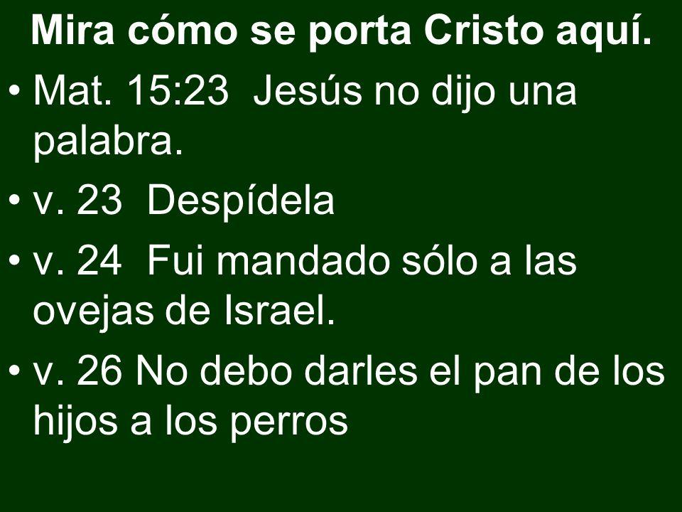 Mira cómo se porta Cristo aquí. Mat. 15:23 Jesús no dijo una palabra. v. 23 Despídela v. 24 Fui mandado sólo a las ovejas de Israel. v. 26 No debo dar