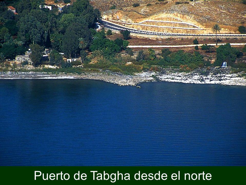 Puerto de Tabgha desde el norte