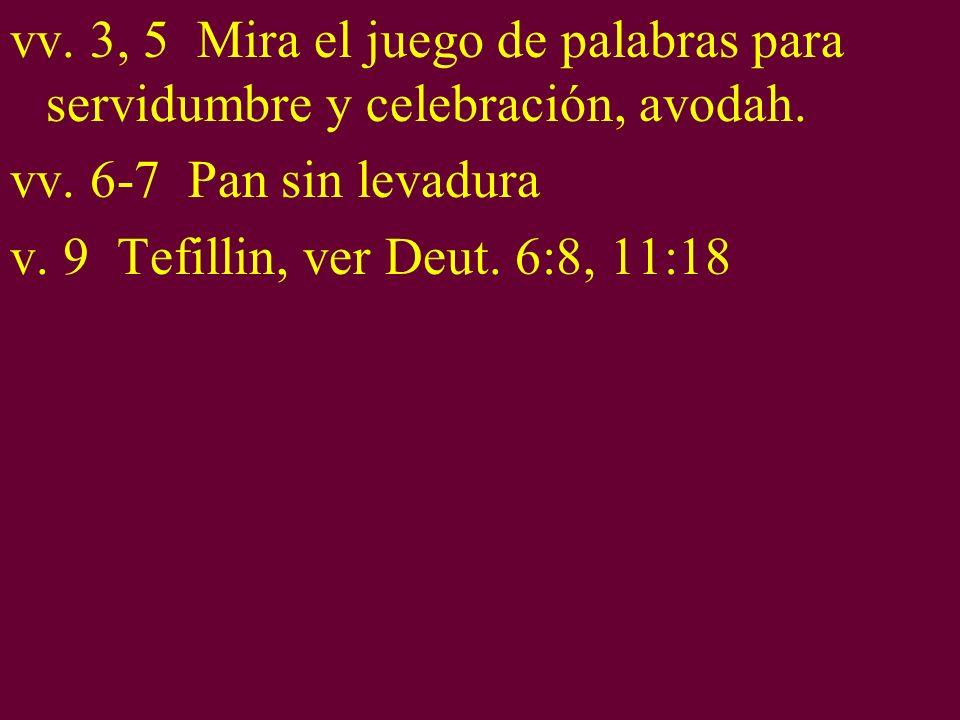 vv. 3, 5 Mira el juego de palabras para servidumbre y celebración, avodah. vv. 6-7 Pan sin levadura v. 9 Tefillin, ver Deut. 6:8, 11:18