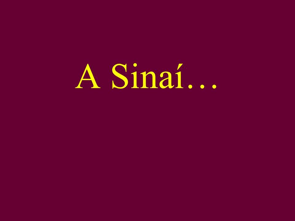 A Sinaí…