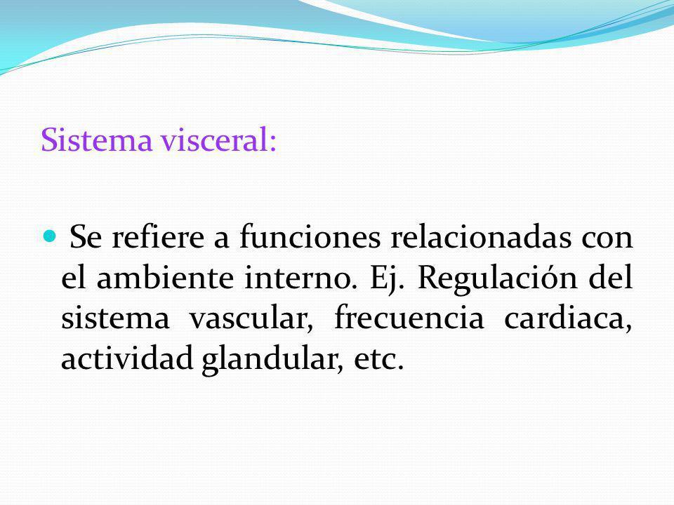 Sistema visceral: Se refiere a funciones relacionadas con el ambiente interno. Ej. Regulación del sistema vascular, frecuencia cardiaca, actividad gla