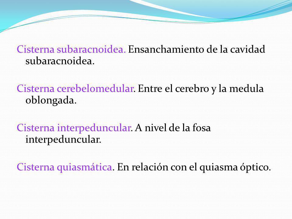 Cisterna subaracnoidea. Ensanchamiento de la cavidad subaracnoidea. Cisterna cerebelomedular. Entre el cerebro y la medula oblongada. Cisterna interpe