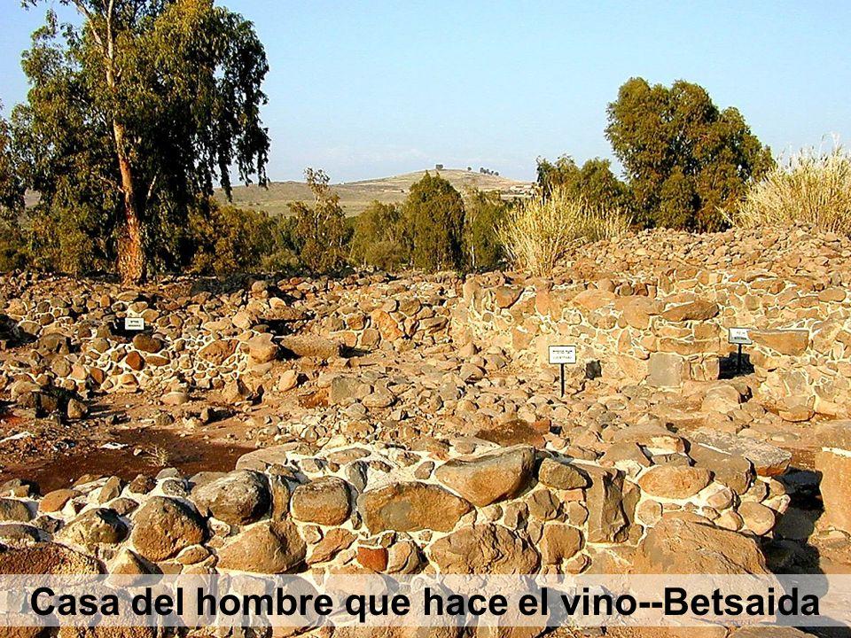 Casa del hombre que hace el vino--Betsaida