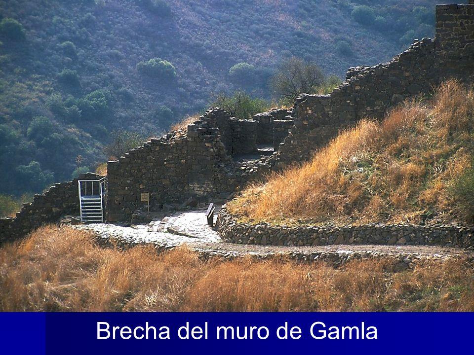 Brecha del muro de Gamla