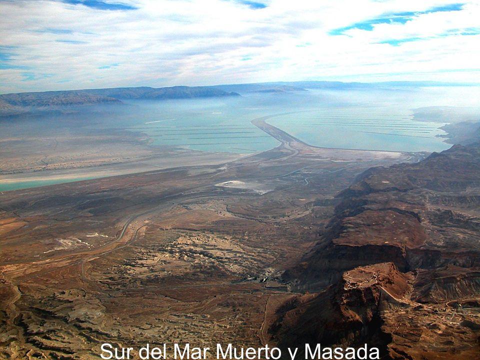 Sur del Mar Muerto y Masada