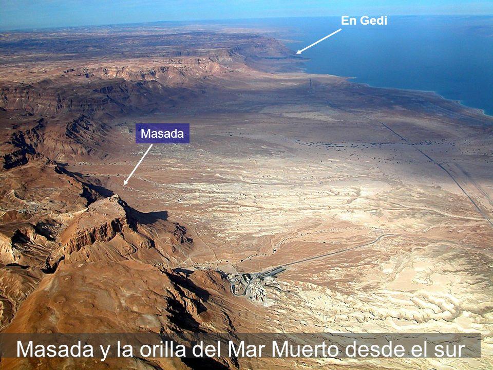 Masada y la orilla del Mar Muerto desde el sur En Gedi Masada
