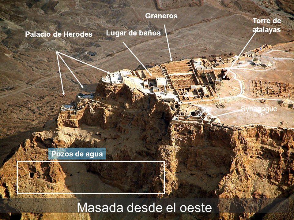 Masada desde el oeste Palacio de Herodes Lugar de baños Graneros Torre de atalayas Synagogue Pozos de agua