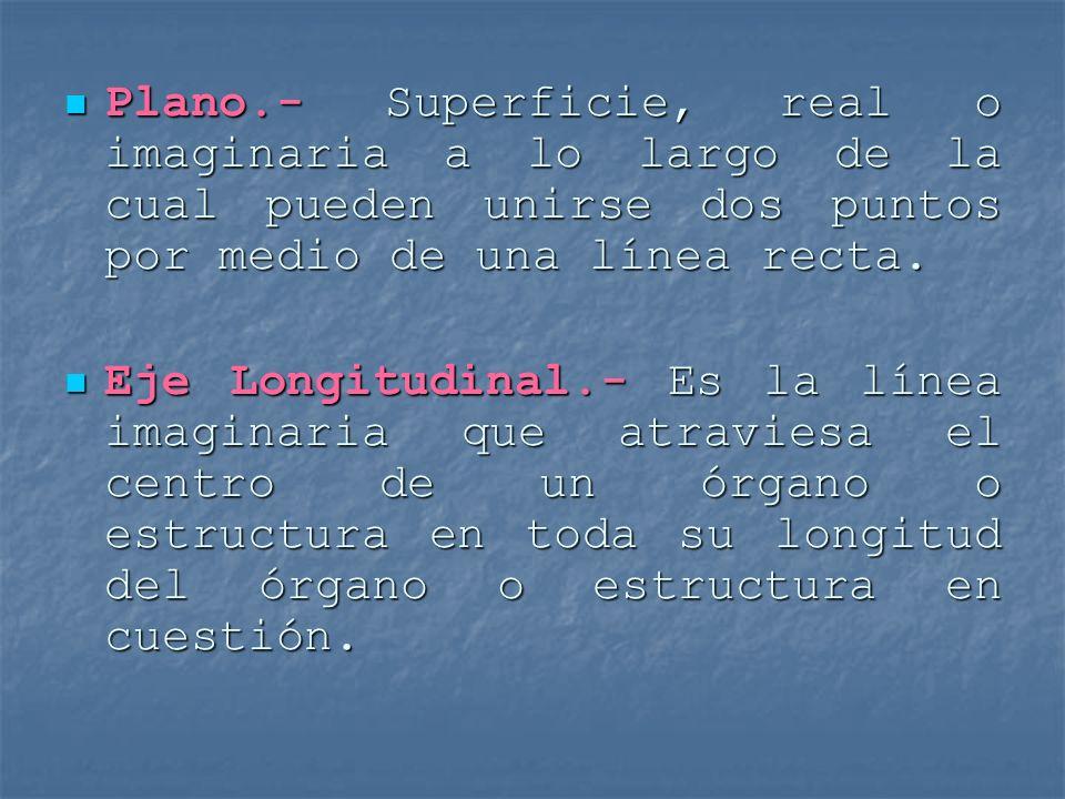Plano.- Superficie, real o imaginaria a lo largo de la cual pueden unirse dos puntos por medio de una línea recta. Plano.- Superficie, real o imaginar