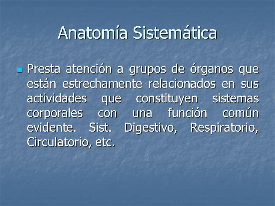 Anatomía Sistemática Presta atención a grupos de órganos que están estrechamente relacionados en sus actividades que constituyen sistemas corporales c