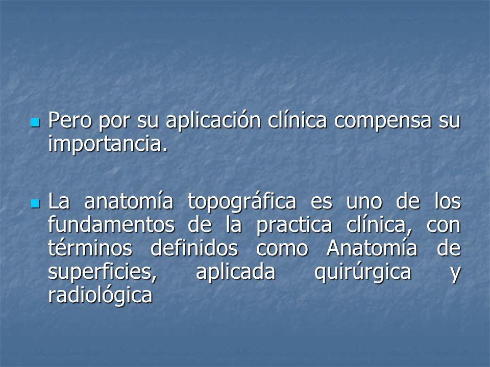 Pero por su aplicación clínica compensa su importancia. Pero por su aplicación clínica compensa su importancia. La anatomía topográfica es uno de los