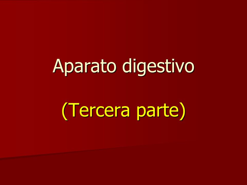 Aparato digestivo (Tercera parte)