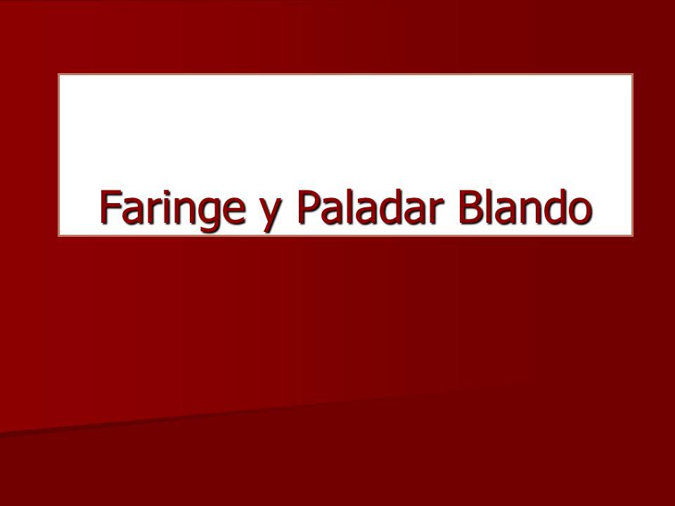 Faringe y Paladar Blando