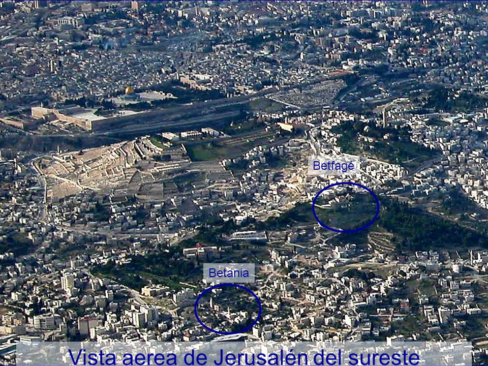 Vista aerea de Jerusalén del sureste Betania Betfagé