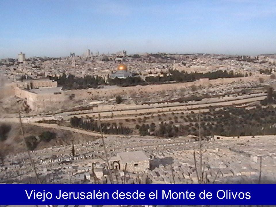 Viejo Jerusalén desde el Monte de Olivos