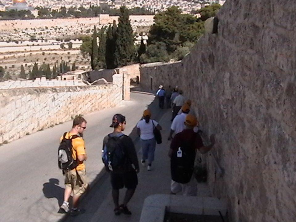 Pared (soreq) dentro del lugar del templo, promesa de entrar al Lugar Santísimo.
