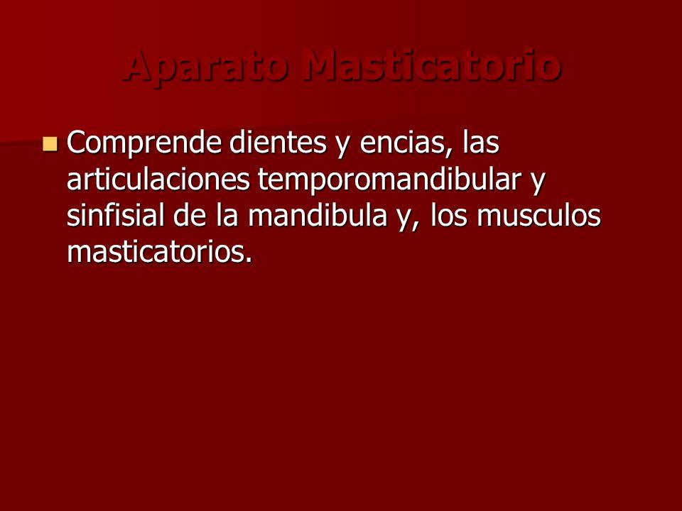 Aparato Masticatorio Comprende dientes y encias, las articulaciones temporomandibular y sinfisial de la mandibula y, los musculos masticatorios. Compr