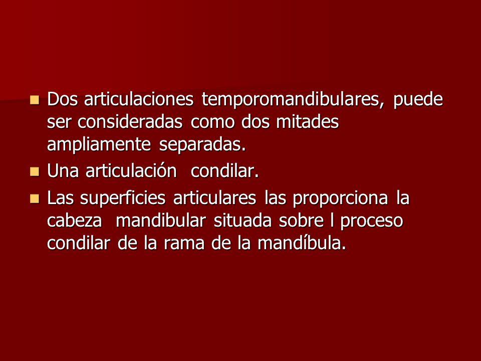 Dos articulaciones temporomandibulares, puede ser consideradas como dos mitades ampliamente separadas. Dos articulaciones temporomandibulares, puede s
