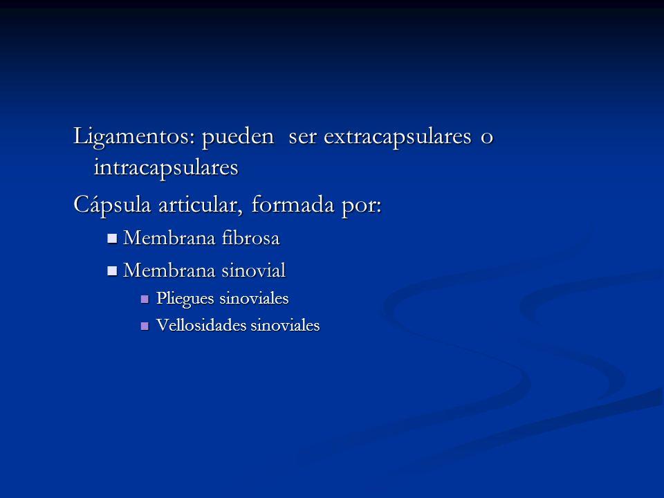 Ligamentos: pueden ser extracapsulares o intracapsulares Cápsula articular, formada por: Membrana fibrosa Membrana fibrosa Membrana sinovial Membrana