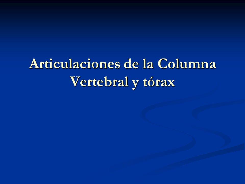 Articulaciones de la Columna Vertebral y tórax