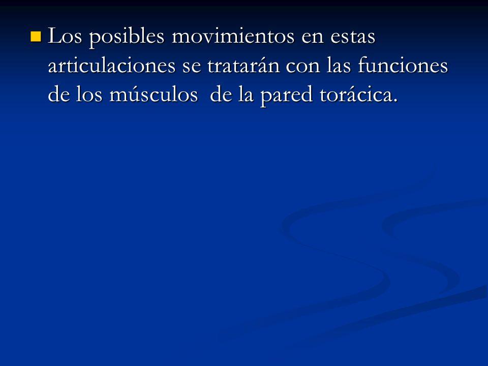 Los posibles movimientos en estas articulaciones se tratarán con las funciones de los músculos de la pared torácica. Los posibles movimientos en estas