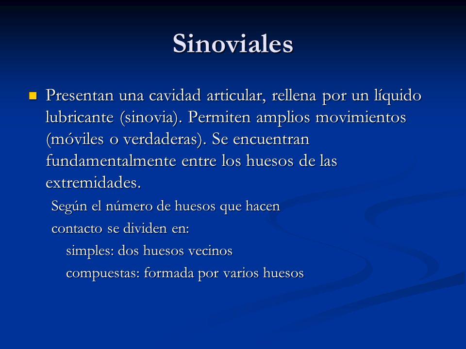 Sinoviales Presentan una cavidad articular, rellena por un líquido lubricante (sinovia). Permiten amplios movimientos (móviles o verdaderas). Se encue