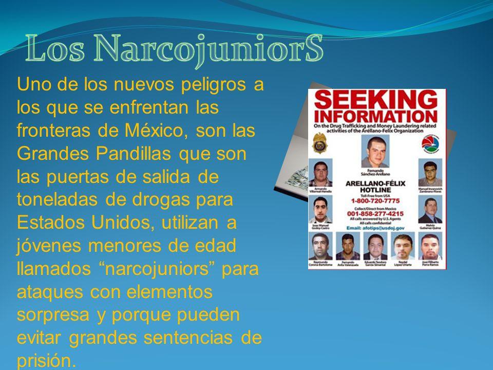 Uno de los nuevos peligros a los que se enfrentan las fronteras de México, son las Grandes Pandillas que son las puertas de salida de toneladas de dro