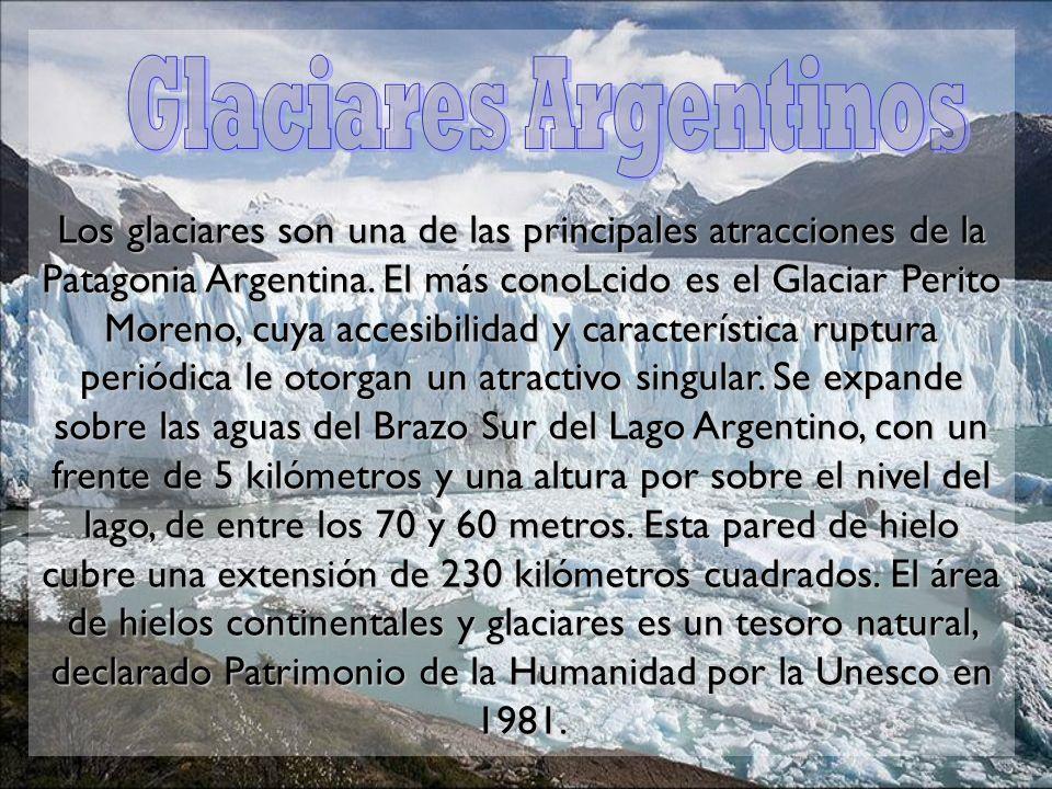 Los glaciares son una de las principales atracciones de la Patagonia Argentina. El más conoLcido es el Glaciar Perito Moreno, cuya accesibilidad y car