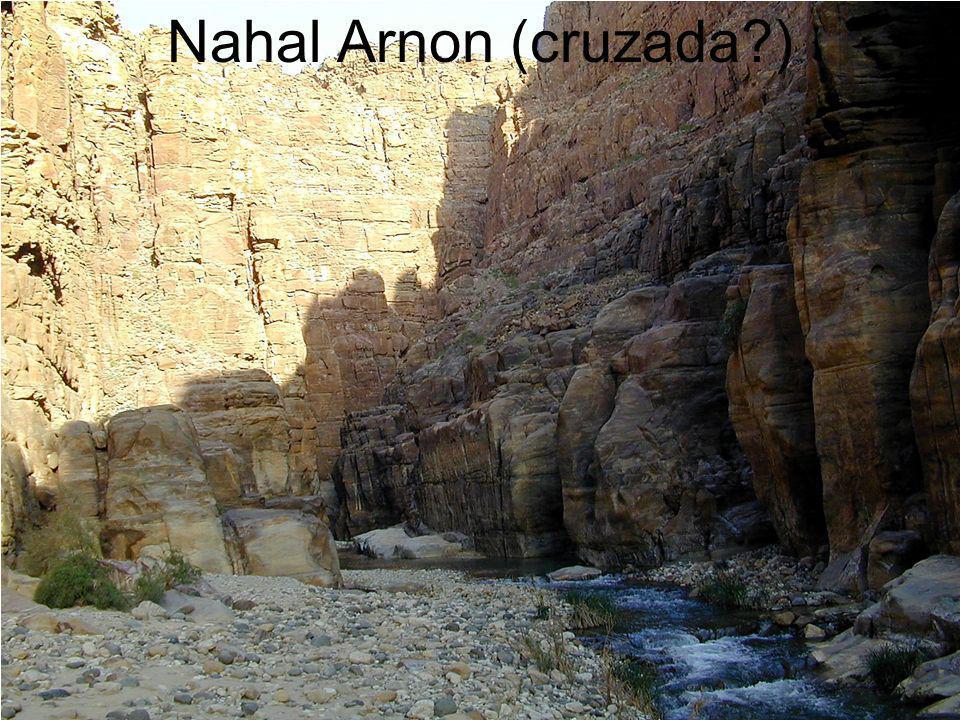 Nahal Arnon (cruzada?)