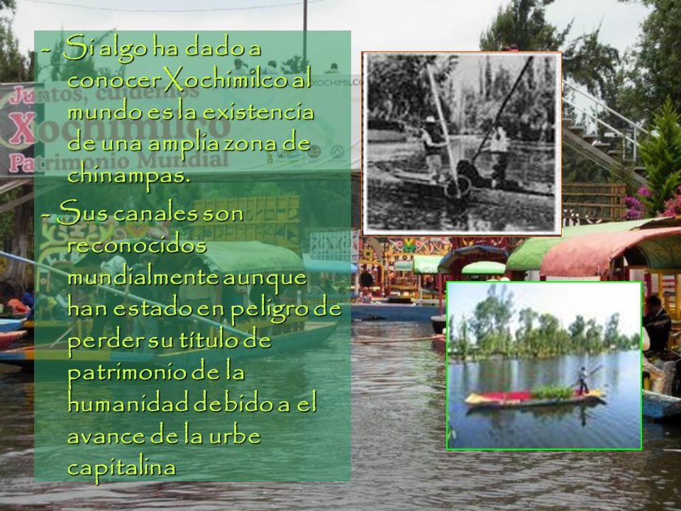 - Si algo ha dado a conocer Xochimilco al mundo es la existencia de una amplia zona de chinampas. - Sus canales son reconocidos mundialmente aunque ha