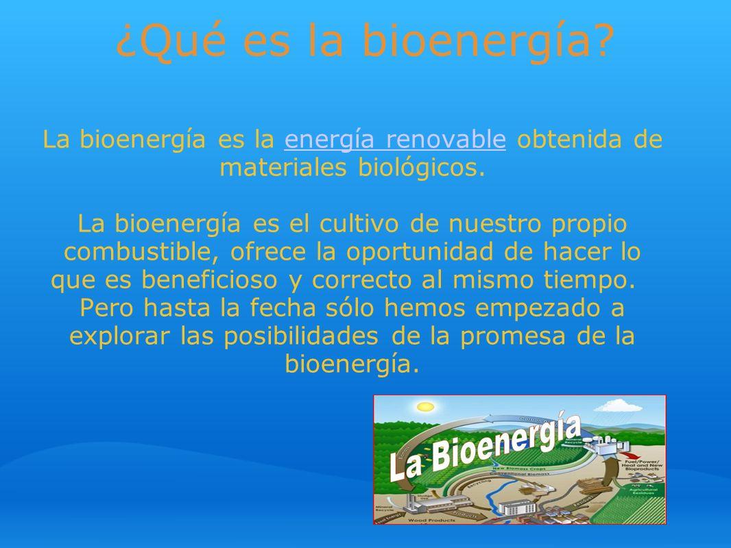 ¿Qué es la bioenergía? La bioenergía es la energía renovable obtenida de materiales biológicos. La bioenergía es el cultivo de nuestro propio combusti
