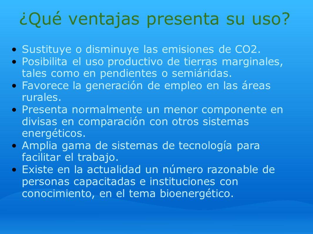 ¿Qué ventajas presenta su uso? Sustituye o disminuye las emisiones de CO2. Posibilita el uso productivo de tierras marginales, tales como en pendiente