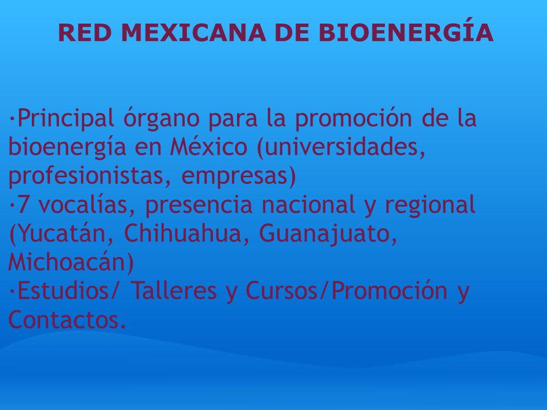 RED MEXICANA DE BIOENERGÍA ·Principal órgano para la promoción de la bioenergía en México (universidades, profesionistas, empresas) ·7 vocalías, prese