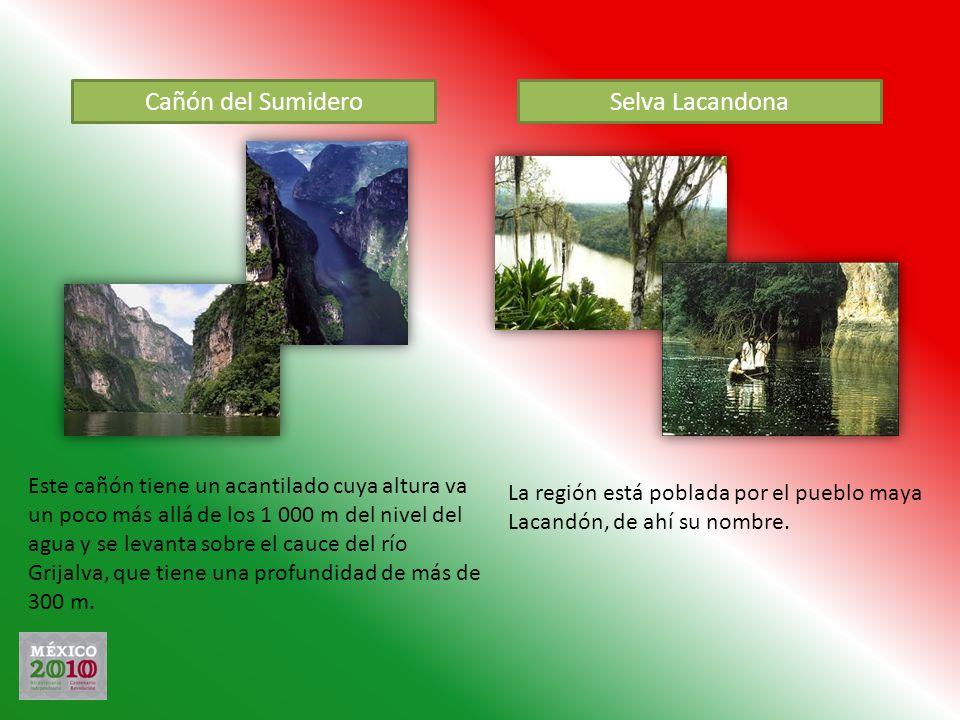 Cañón del Sumidero Este cañón tiene un acantilado cuya altura va un poco más allá de los 1 000 m del nivel del agua y se levanta sobre el cauce del rí