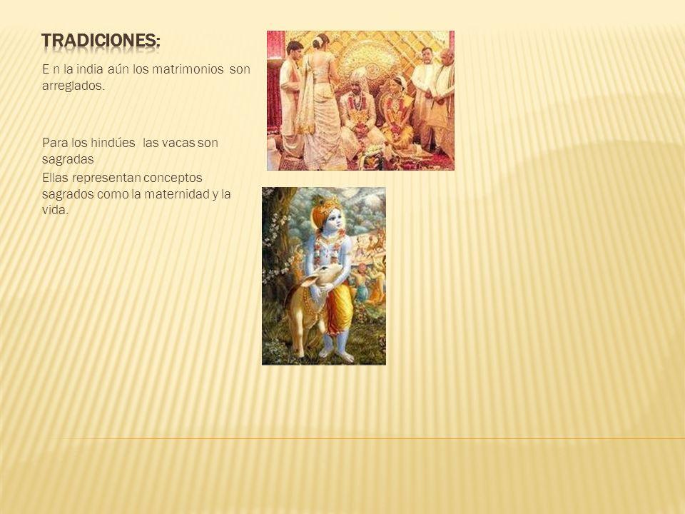 E n la india aún los matrimonios son arreglados. Para los hindúes las vacas son sagradas Ellas representan conceptos sagrados como la maternidad y la