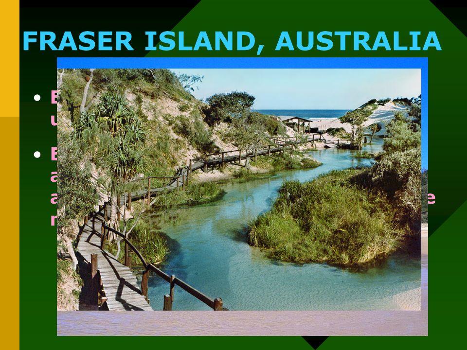 FRASER ISLAND, AUSTRALIA Esta belleza terrenal se encuentra ubicada en la costa Este australiana. En este lugar nos ofrece diversas atracciones, como