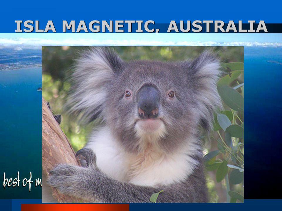 ISLA MAGNETIC, AUSTRALIA Este lugar atrae a miles de turistas cada año, principalmente a la gente interesada en caminar los bellos senderos y contempl