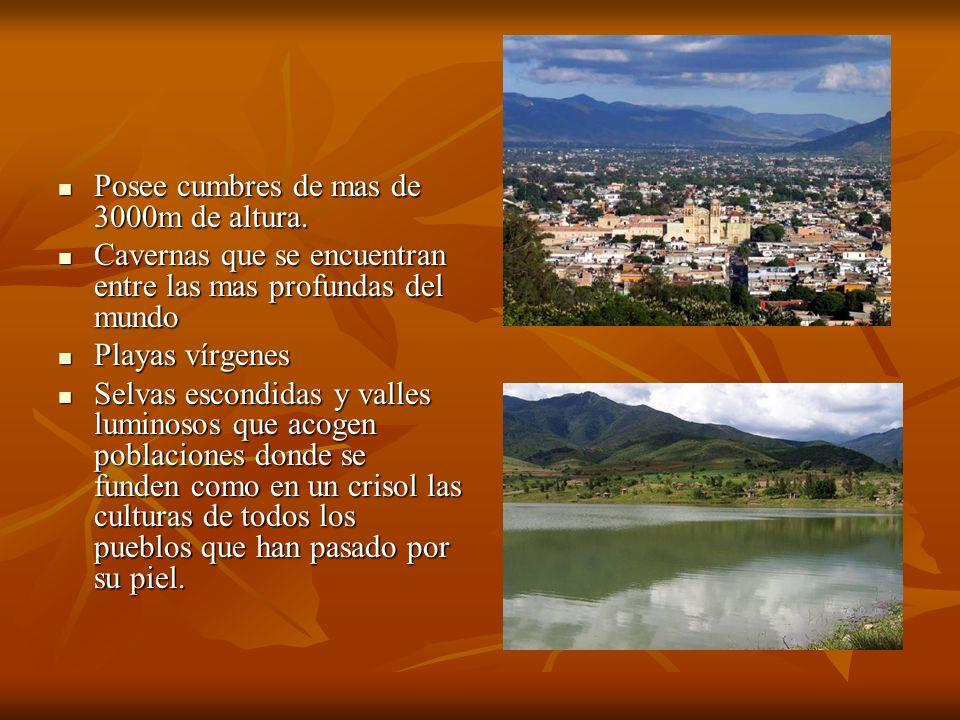 Bibliografía www.oaxaca.gog.mx www.oaxaca.gog.mx www.oaxaca.gog.mx http://oaxaca.com/links/cultura/patrimonio.htm http://oaxaca.com/links/cultura/patrimonio.htm http://oaxaca.com/links/cultura/patrimonio.htm http://www.redmexicana.com/patrimonio/montealban.asp http://www.redmexicana.com/patrimonio/montealban.asp http://www.redmexicana.com/patrimonio/montealban.asp http://www.redmexicana.com/patrimonio/montealban.asp www.unesco.org www.unesco.org www.unesco.org www.visitamexico.com www.visitamexico.com www.visitamexico.com http://es.wikipedia.org/wiki/Mitla http://es.wikipedia.org/wiki/Mitla http://es.wikipedia.org/wiki/Mitla http://www.oaxaca- mio.com/atrac_turisticos/mitla.htm http://www.oaxaca- mio.com/atrac_turisticos/mitla.htm