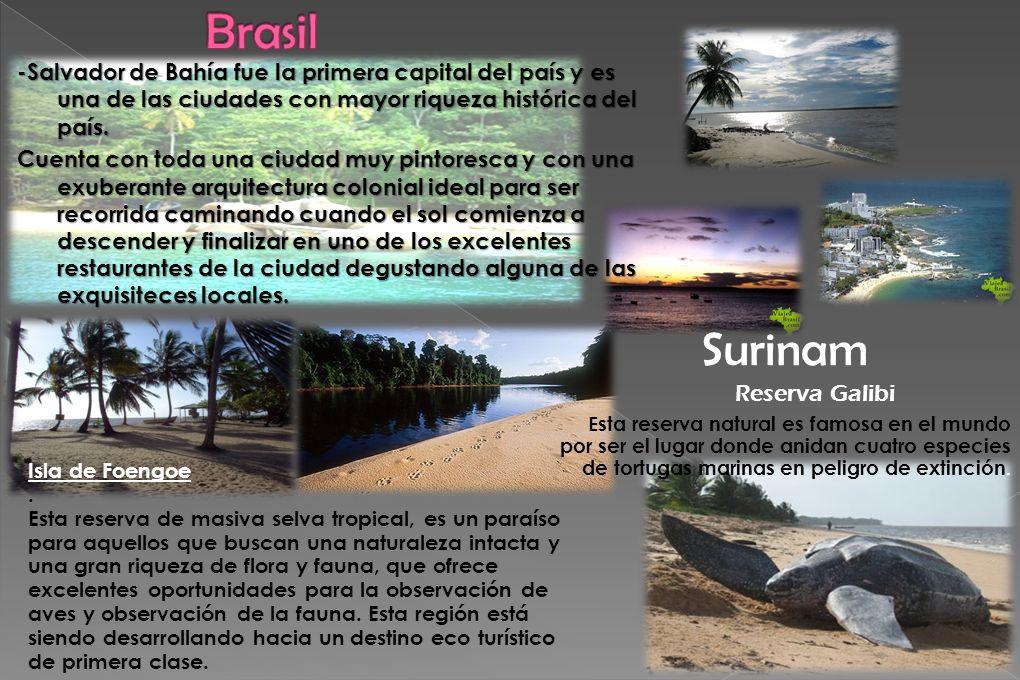 -Salvador de Bahía fue la primera capital del país y es una de las ciudades con mayor riqueza histórica del país. Cuenta con toda una ciudad muy pinto