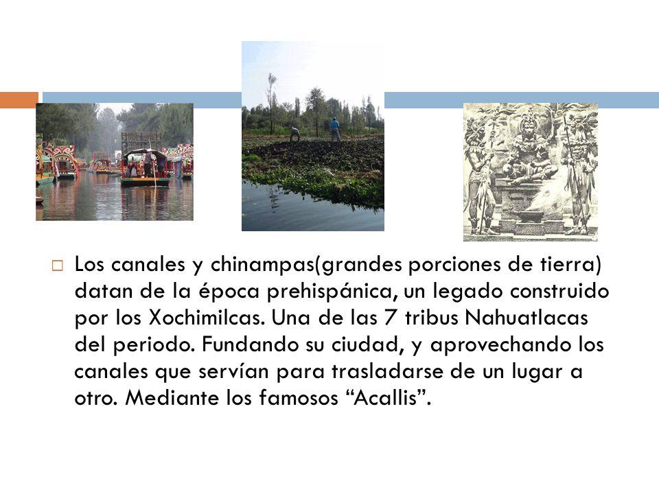 Los canales y chinampas(grandes porciones de tierra) datan de la época prehispánica, un legado construido por los Xochimilcas. Una de las 7 tribus Nah