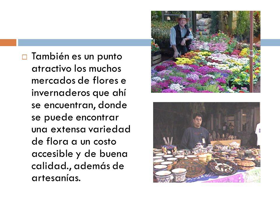 También es un punto atractivo los muchos mercados de flores e invernaderos que ahí se encuentran, donde se puede encontrar una extensa variedad de flo