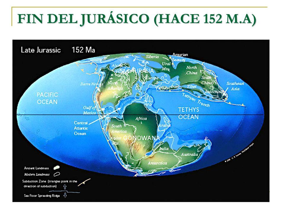 FIN DEL JURÁSICO (HACE 152 M.A)